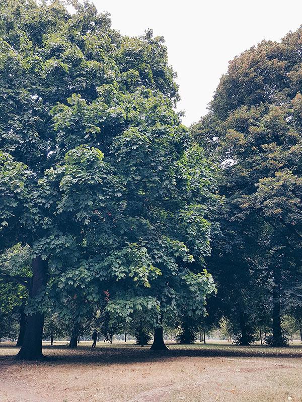 2016-09-14-LONDON-PARKS